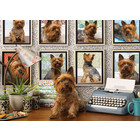 Outset Media . OUT Yorkies Are My Type 1000 pc Puzzles