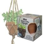Pepperell . PEP Mini Terra Cotta Pot & Jute Plant Hanger Set