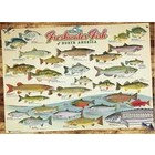 Cobble Hill . CBH Fishwater Fish Of North America - Puzzle 1000pc Calgary