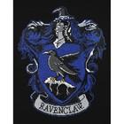 Camelot Diamond Dotz . CDD Harry Potter - Ravenclaw Crest - Diamond Art