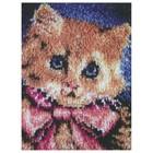 Caron . CAR Latch Hook - Kitty
