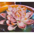 Leisure Arts . LSA Lotus Diamond Art Kit
