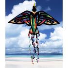 Skydogs Kites . SKK TIE DYE BIRD