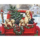 Dimensions . DMS Holiday Puppy Truck - Paint By Number