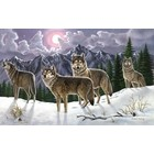 Royal (art supplies) . ROY Wolves Paint By Number