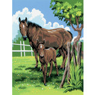 Royal (art supplies) . ROY Mare and Foal Paint By Number