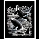 Royal (art supplies) . ROY Engrave Art Silver - Orca Whales