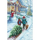 """Dimensions . DMS Dimensions Counted Cross Stitch Kit 9""""X14"""
