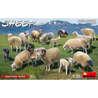 Miniart . MNA 1/35 Sheep