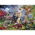 Jumbo Puzzles & Accs . JUM Owles In The Moon Light