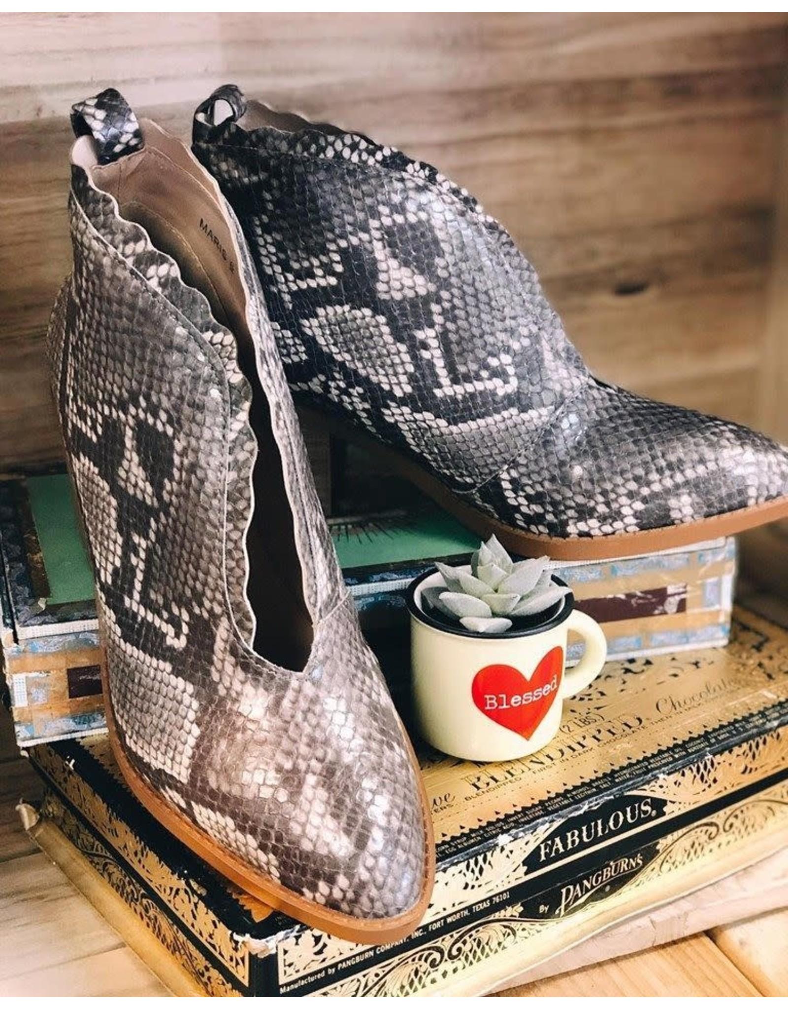 GC Shoes Maris Snake Bootie