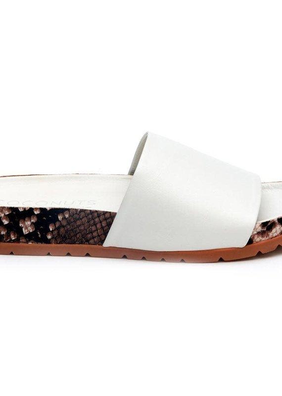 Matisse Footwear Shift