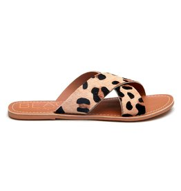 Matisse Footwear Pebble- Leopard