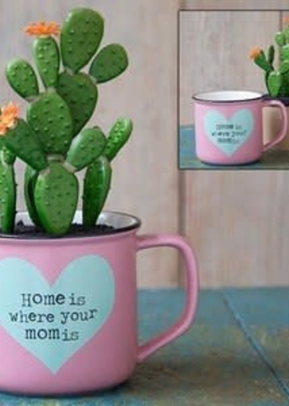 Natural Life Home is Mom 2 in 1 Mug Succulent