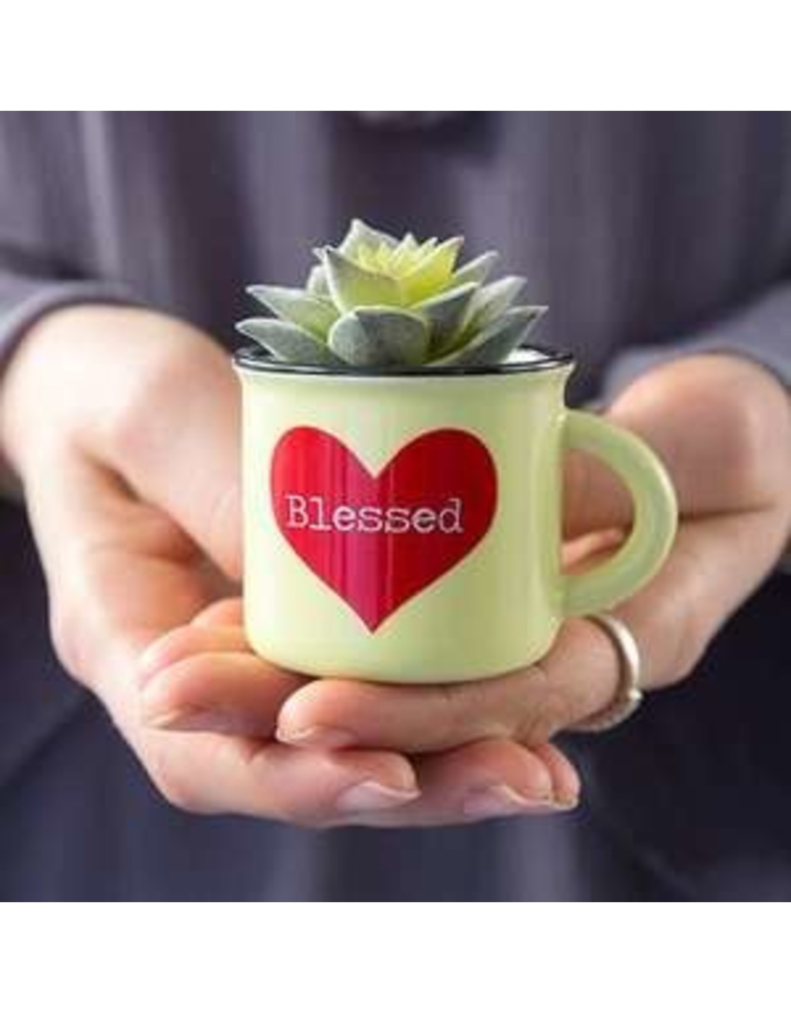 Natural Life Blessed Mini Mug Succulent