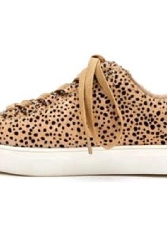 Matisse Footwear Relay Black Spots