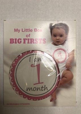 Ganz USA LLC My Little Stickers Box