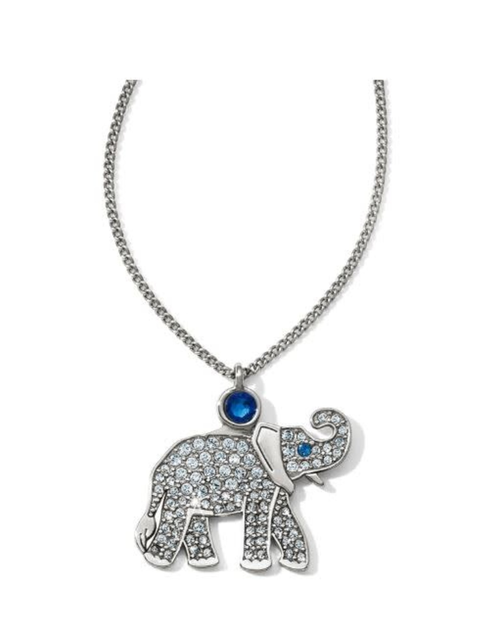 Brighton Africa Stories Elephant