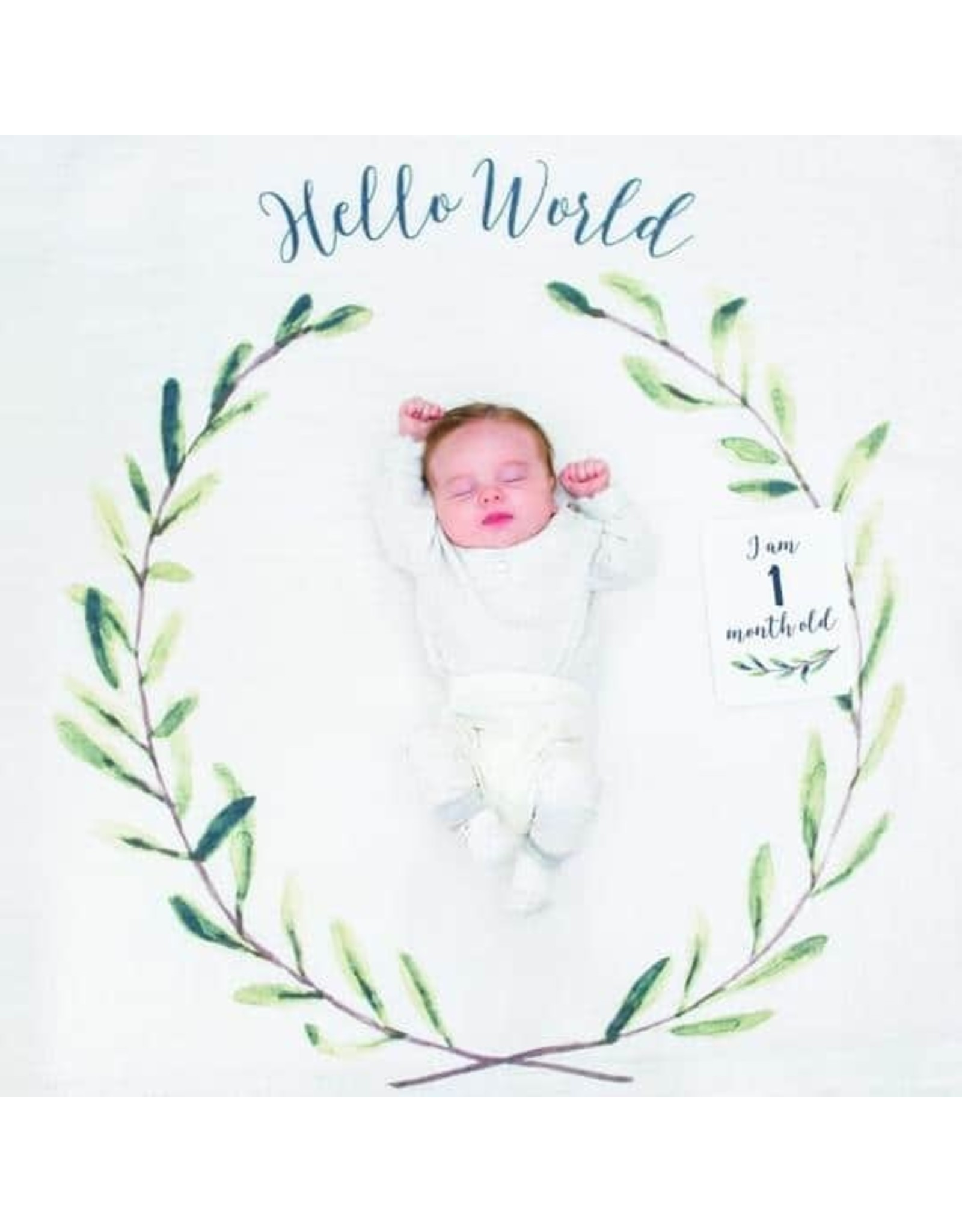 Mary Meyer Baby's First Year-Hello World
