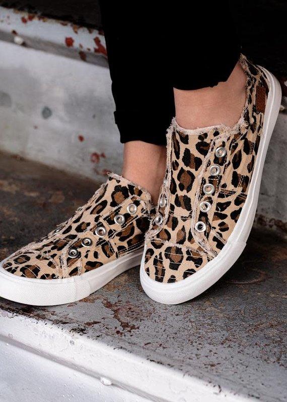 Corky's Babalu-Leopard