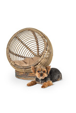 Ball Shaped Cat/Small Dog Bed with Cushion