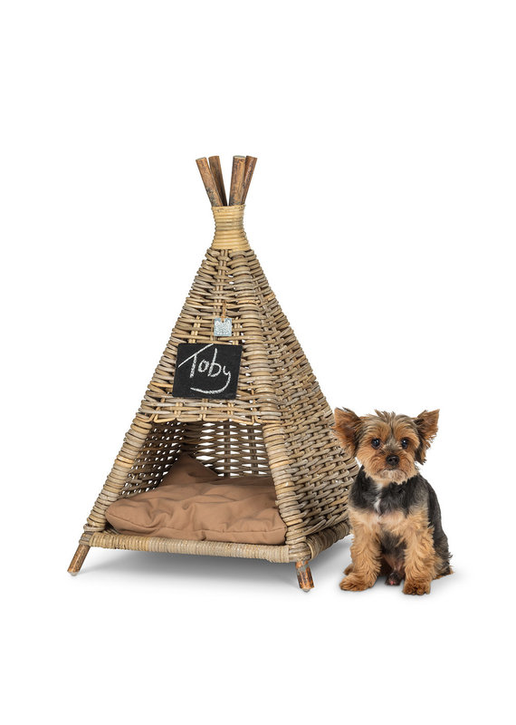 Small Pet Tent with Cushion