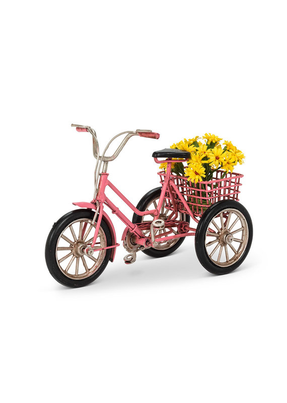 Small Tricycle with Decorations - ES1-3