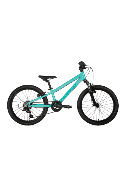 Vélo Norco Storm 2.2 Turquoise 20""