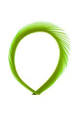 SHOR SHOR Goose Biot Strips - Olive