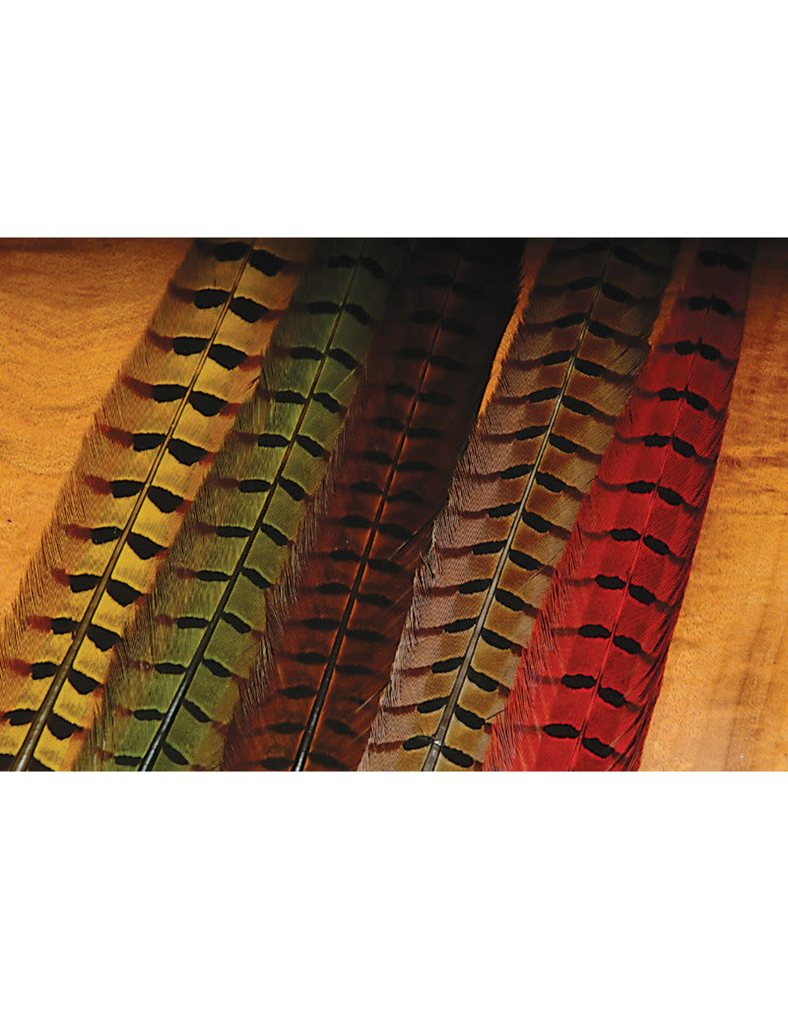 Hareline Ringneck Pheasant Tail Feathers - Black RPCP11