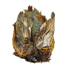 SHOR SHOR Ring-Necked Pheasant Skin Male, Grade A