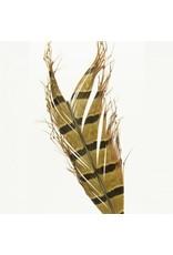 Semperfli Semperfli Knotted Hopper Legs Natural Pheasant Tail