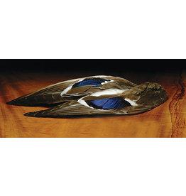 Hareline Hareline Mallard Whole Wings Natural MWW242