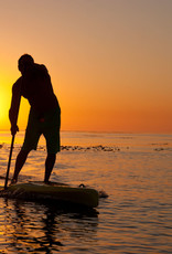 Kayak/SUP/Surf Rentals