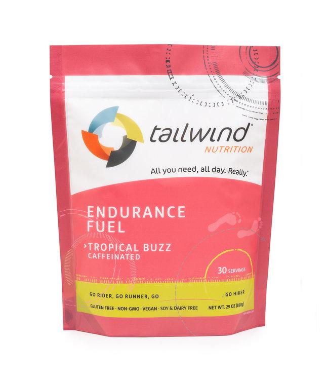 Tailwind Endurance Fuel - 30 Serving Bag