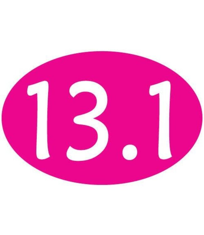 Baysix 13.1 Oval Magnet (Pink)