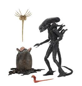 NECA Alien – 7″ Scale Action Figure – Ultimate 40th Anniversary Big Chap