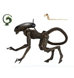 NECA Alien 3 Ultimate Dog Alien Action Figure