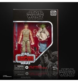 "Hasbro Star Wars 40th Anniversary The Black Series 6"" Deluxe Luke Skywalker & Yoda (Jedi Training) Two-Pack"
