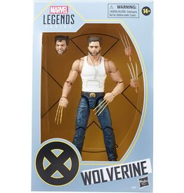 Hasbro Hasbro Marvel Legends Series Wolverine 6-inch Collectible Action Figure (Amazon Exclusive)