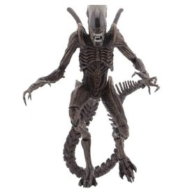 "NECA Aliens Resurrection Series 14 Xenomorph Warrior 7"" Scale Action Figure"