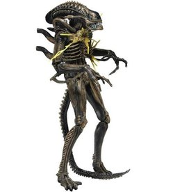 NECA NECA Aliens Xenomorph Warrior Battle Damaged Brown ActionFigure