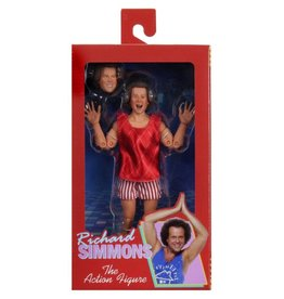 NECA Richard Simmons Figure