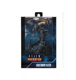 "NECA Aliens vs Predator (Movie Deco) - 7"" Scale Action Figures - Arachnoid"