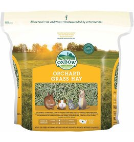 OXBOW PET PRODUCTS 15Z ORCHARD GRASS