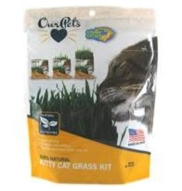OURPETS COMPANY OurPets COSMIC KITTY CAT GRASS .88 oz.