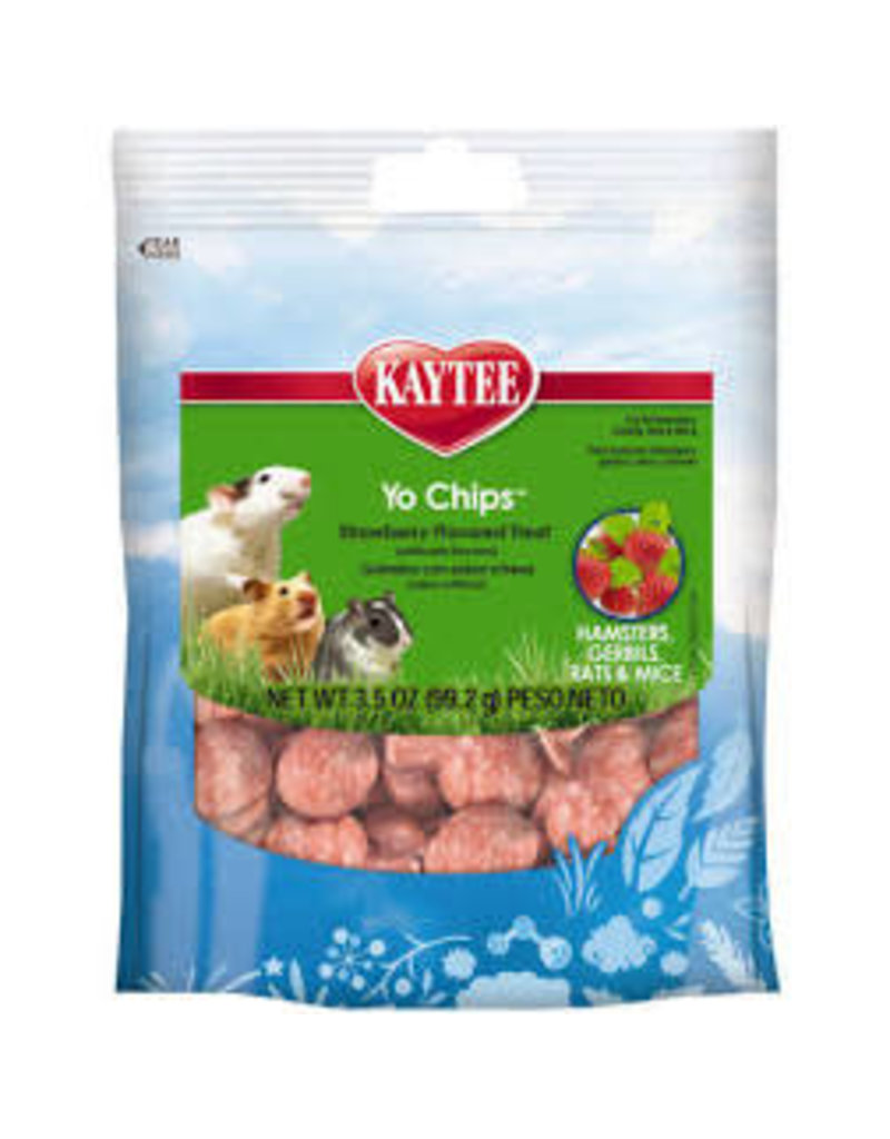 KAYTEE PRODUCTS INC Kaytee Yo Chips strawberry 3.5oz