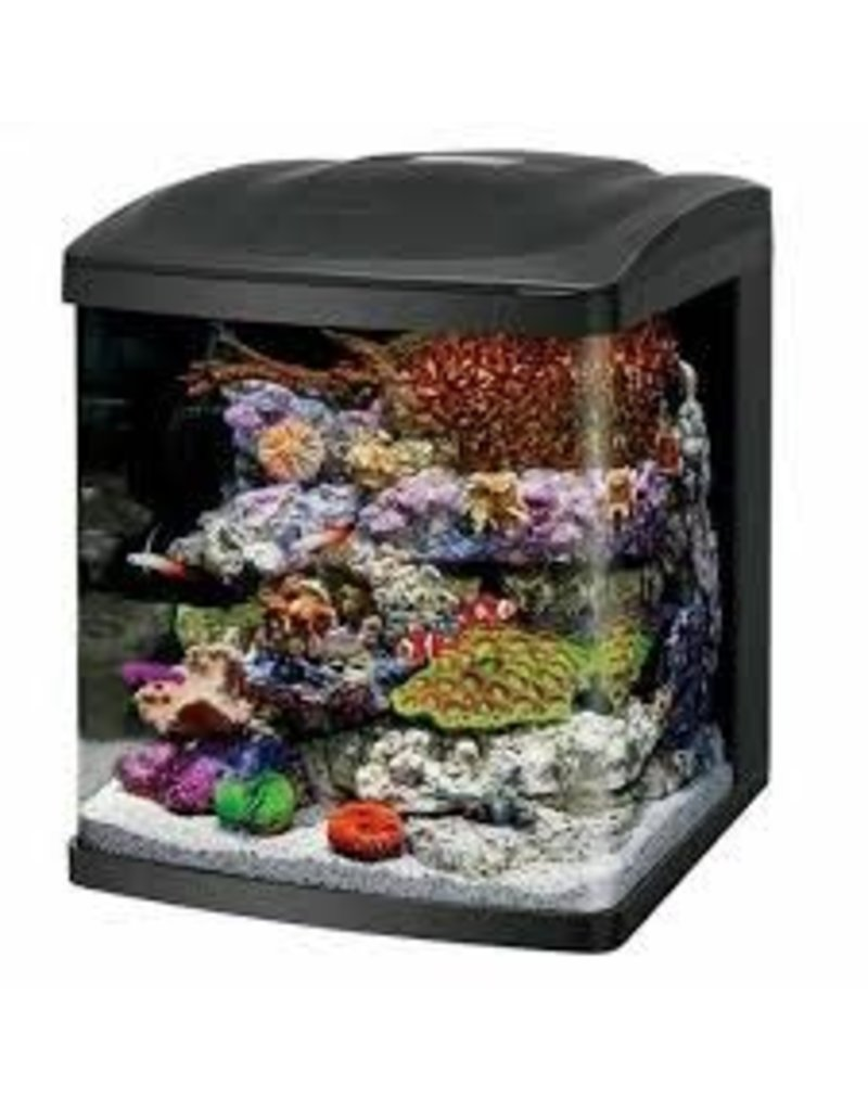 CORALIFE BIOCUBE LED AQUARIUM 16GAL