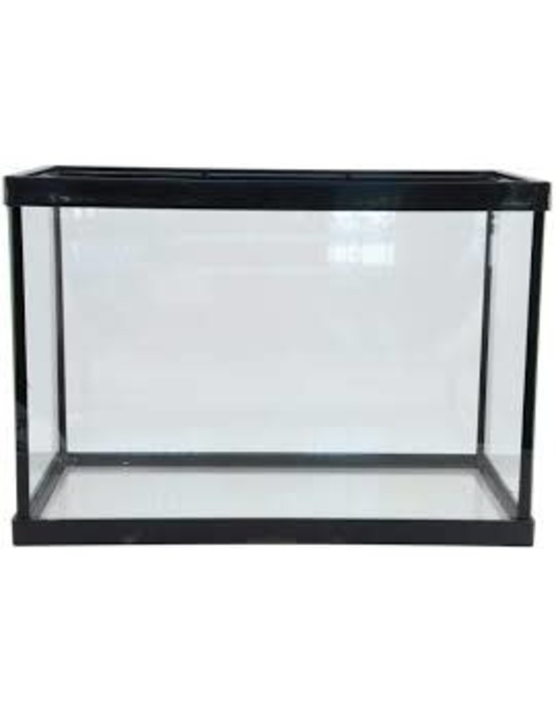 10 GALLON GLASS AQUARIUM 20X10X12