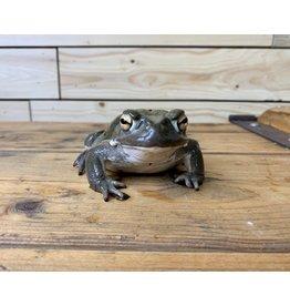 """Colorado River Toad (5"""")"""